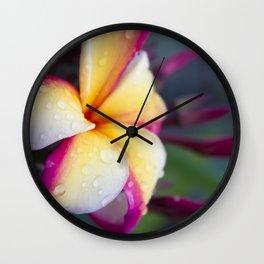 Hawaii Plumeria Flower Jewels Wall Clock