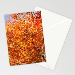 Autumn foliage Stationery Cards