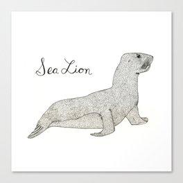 Sea Lion Canvas Print