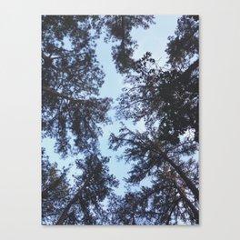 Tops Canvas Print