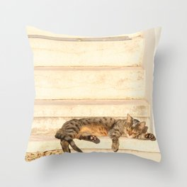 The sun shines on all cats equally Throw Pillow