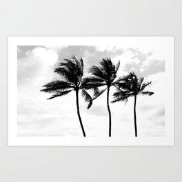 Palm Tree Noir #70 Art Print