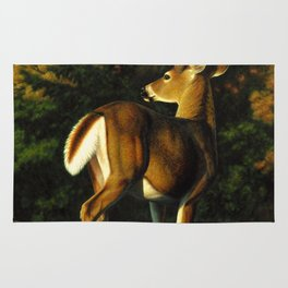 Whitetail Deer Trophy Buck Rug