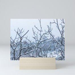 Winter snowy branches Mini Art Print
