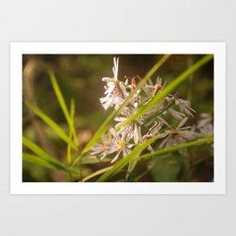 Floral Swish Art Print