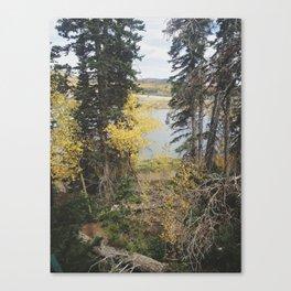 Duck Creek, Utah Canvas Print