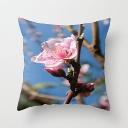 Delicate Buds of Peach Tree Blossom Throw Pillow