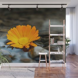 Flower Photography by amirali mirhashemian Wall Mural