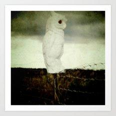 Farm Owl Art Print