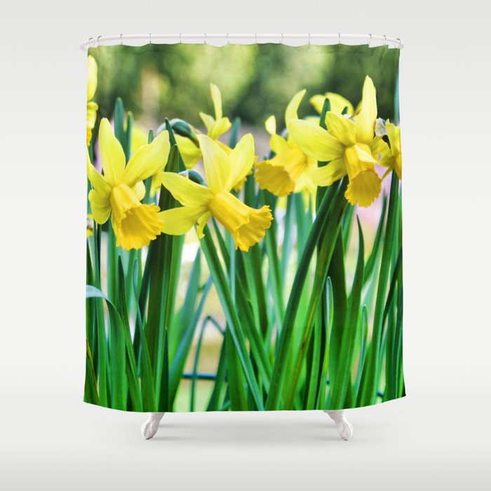 Daffodils for the Love of Spring! Shower Curtain