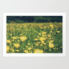 Field of yellow Art Print
