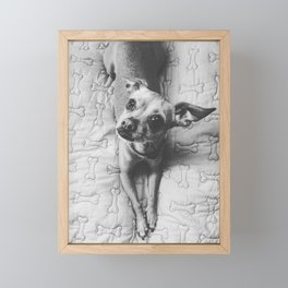 Cute dog Framed Mini Art Print