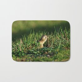 Thirteen-lined Ground Squirrel Eating - Photography Bath Mat