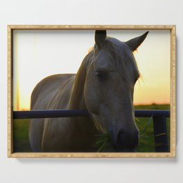 Beautiful Horse at Sunset Serving Tray