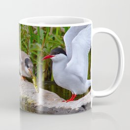 Baby Arctic Tern Feeding Coffee Mug