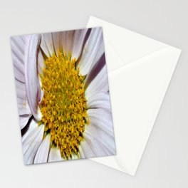 Daised Stationery Cards