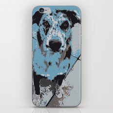 Catahoula Catawhat iPhone & iPod Skin