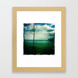 Coronation park Framed Art Print
