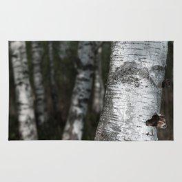 birches II Rug