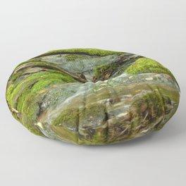 Life flowing through nature Floor Pillow