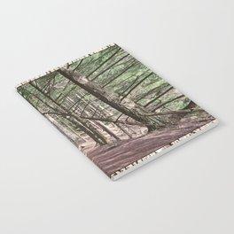 SHADOWS ON A WOODLAND PATH Notebook