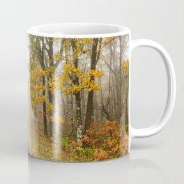 Autumn Road 4 Coffee Mug