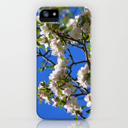Apple Blossom Branch iPhone Case