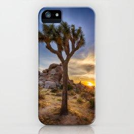 Charming sunset at Joshua Tree National Park iPhone Case