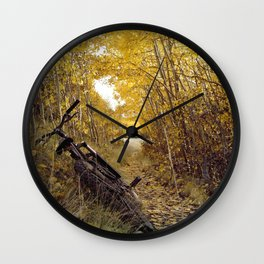 Beautiful pause Wall Clock