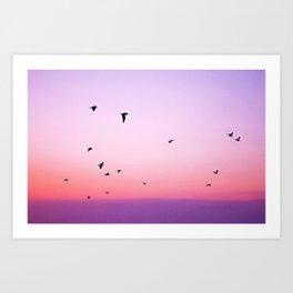 birds in the sky rose Art Print