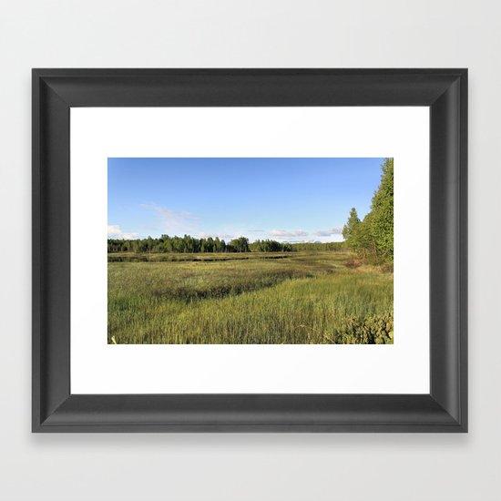 Wetlands Framed Art Print