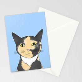 Taz Stationery Cards