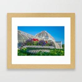 Flowers at Kew Gardens, London Framed Art Print
