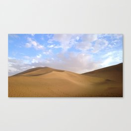 desert photography Canvas Print