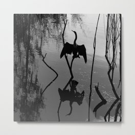 Anhinga Metal Print