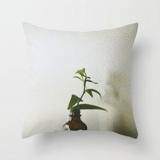 Home #3 Throw Pillow