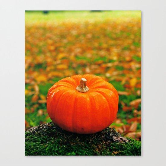 Perfect pumpkin Canvas Print