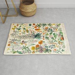 Adolphe Millot Flowers Vintage Scientific Illustration Le Larousse pour tous Lithograph Illustration Rug