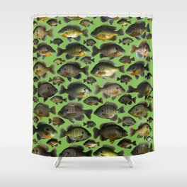 Darwin's Bluegills Shower Curtain