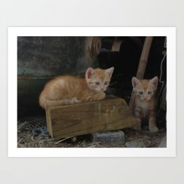 More Kitty Kats!!! Art Print