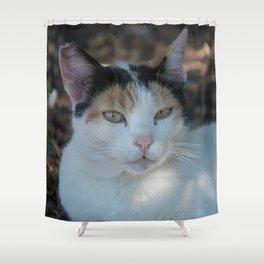 Cat Dubrovnik Shower Curtain