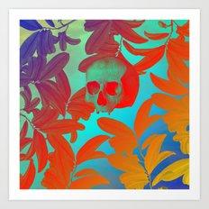 Novsade III Art Print