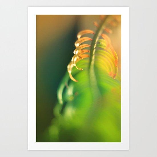 tender 2 Art Print