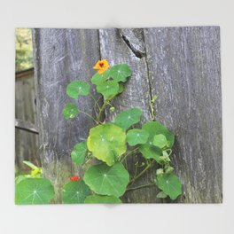 The Garden Wall Throw Blanket