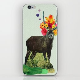 i've been searching for something i've never seen iPhone Skin