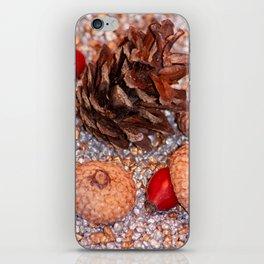 Rosa coxis in arbores autumnales iPhone Skin