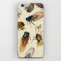 lines iPhone & iPod Skins featuring summer cicadas by Teagan White