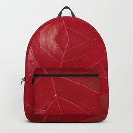 Warm Red Leatherette Backpack