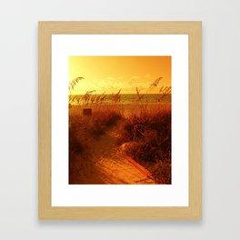 Falls Path Framed Art Print