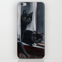 Barn Cats iPhone Skin